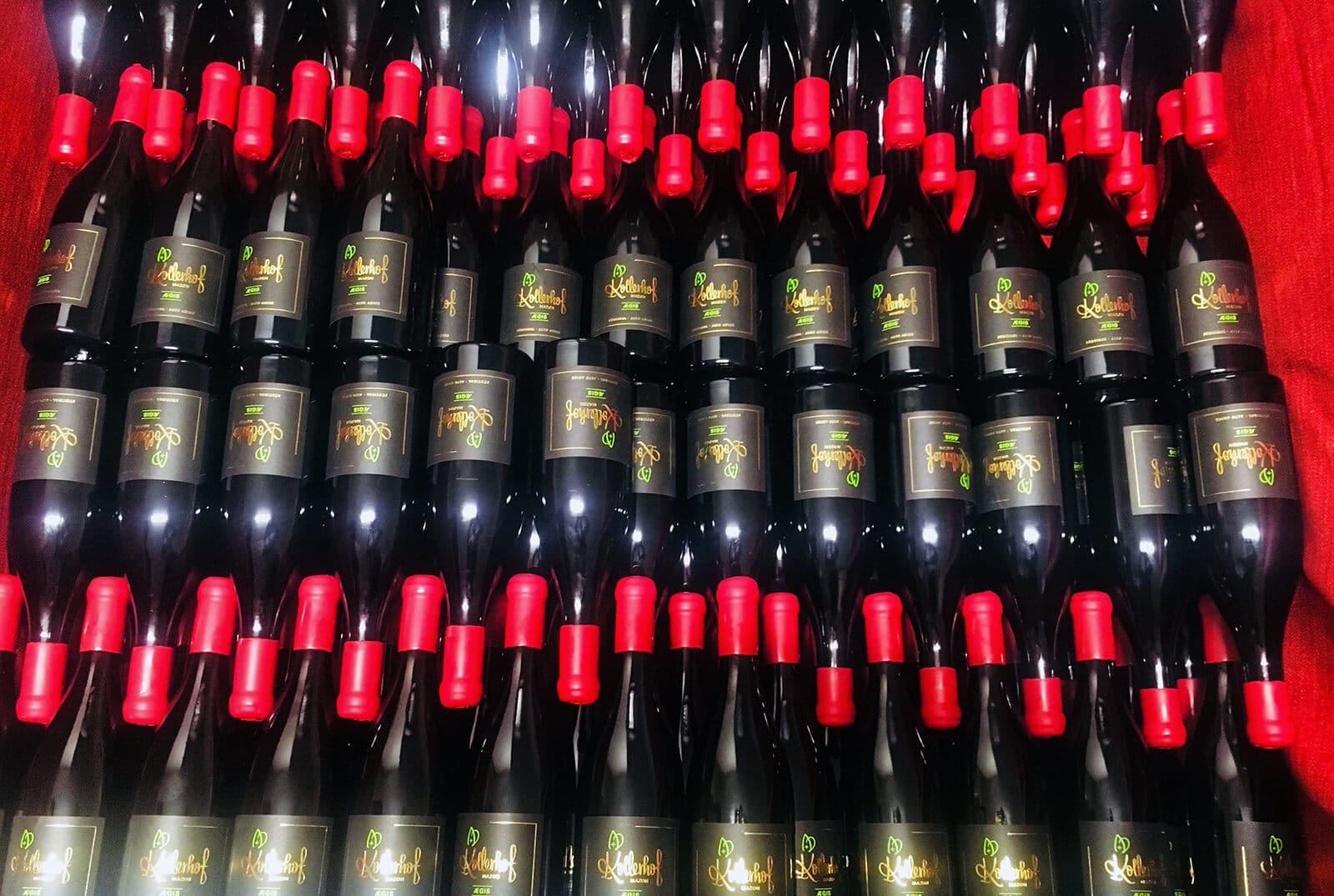 Kollerhof_AEGIS-Flaschen